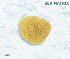 Sea Matrix Морська губка натуральна 44116 Boldrini